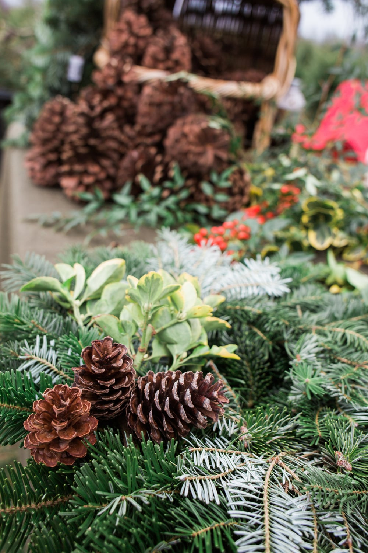 ChristmasTree-3.jpg