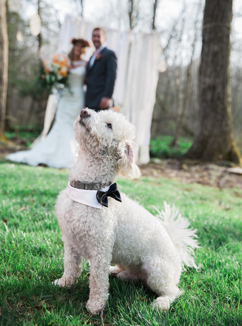 Maryland Wedding Styled Shoot-18.jpg