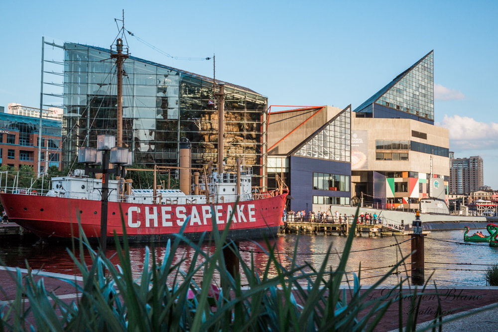 Diner en Blanc Baltimore Photographers Inner Harbor