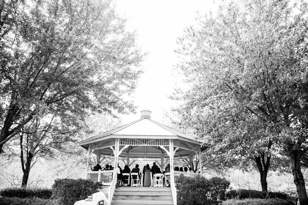 Quiet Waters Park Wedding Megapixels Media Photographers-15.jpg