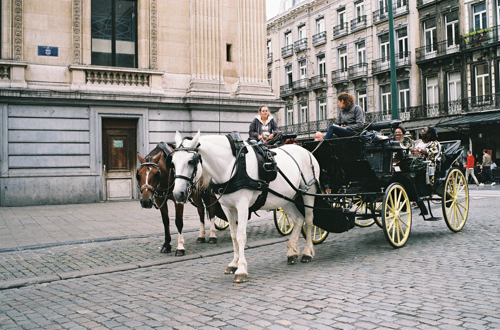 Destination Wedding Photographers in Belgium-10.jpg