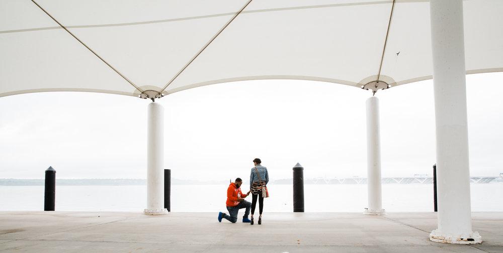 Wedding Proposal at National Harbor