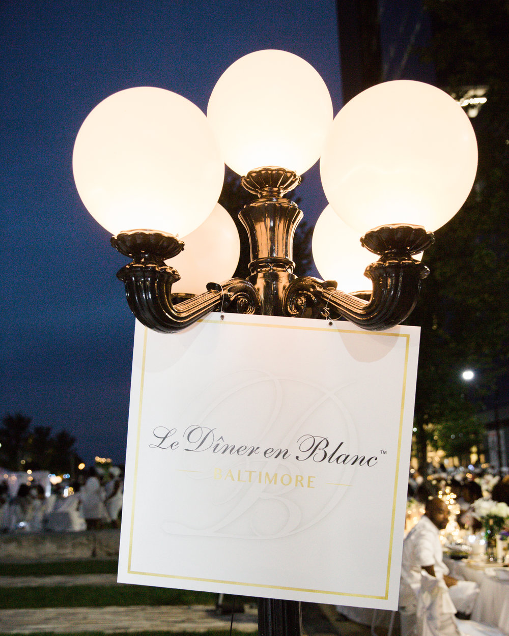 Diner En Blanc Baltimore Megapixels Media Photography-70.jpg