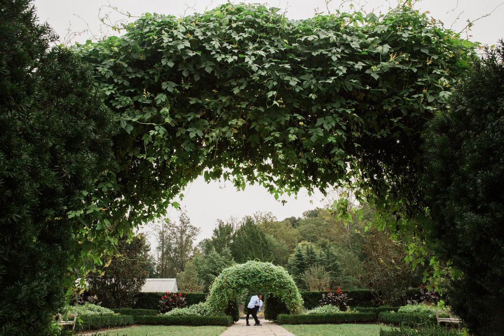 Brookside Garden Engagement Megapixels Media Photography Bethesda Maryland-16.jpg