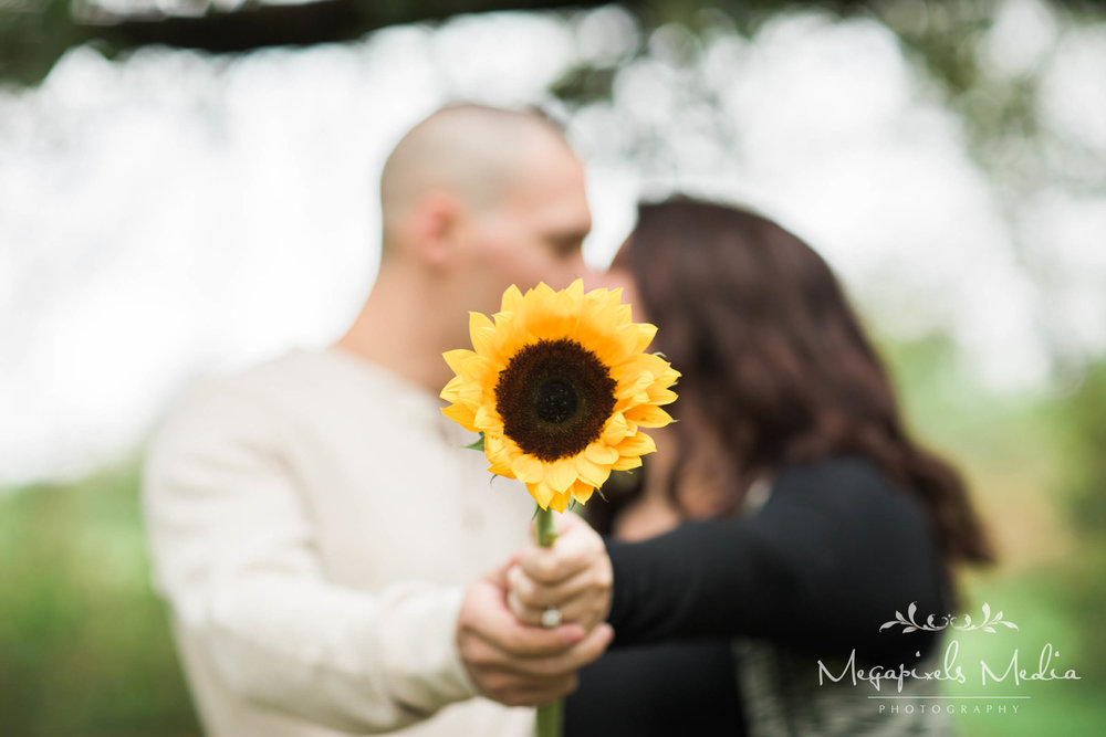 Sunflower Engagement Session at Cromwell Valley Park Baltimore Wedding Photographers Megapixels Media (9 of 31).jpg
