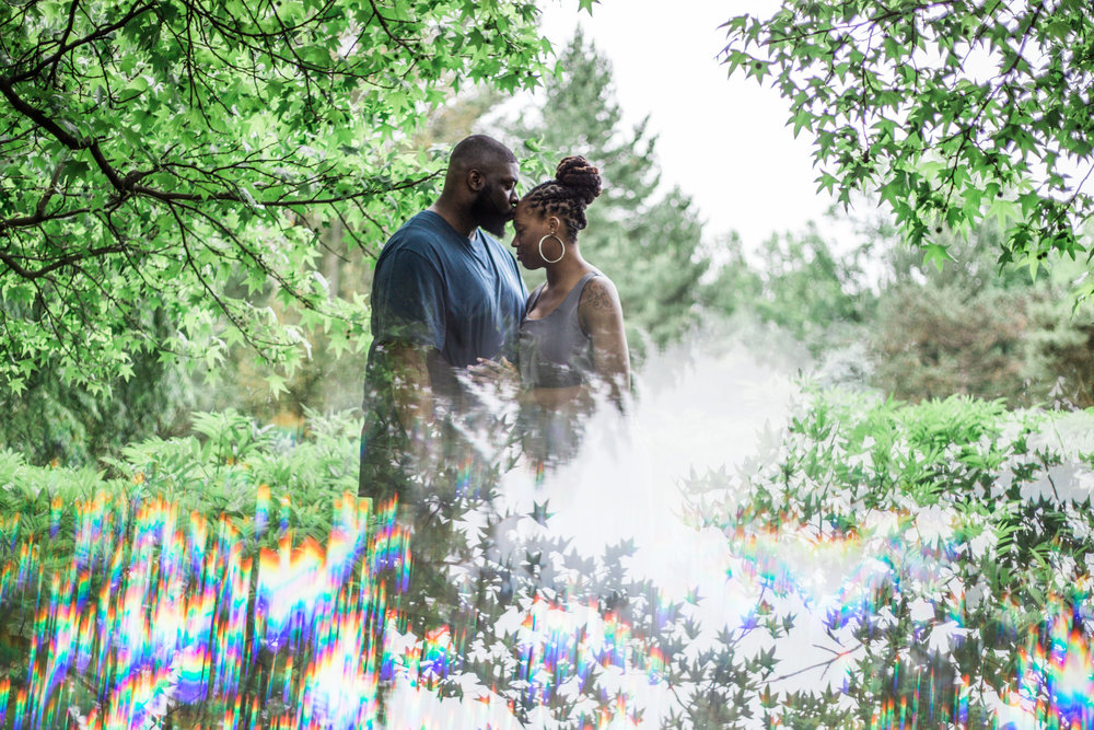 Best Engagement Photographs in Cylburn arboretum by Megapixels Media Photography.jpeg