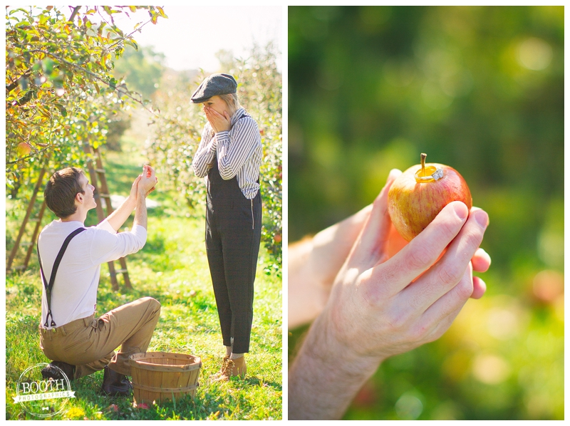 man proposing in an orchard in Madison, WI