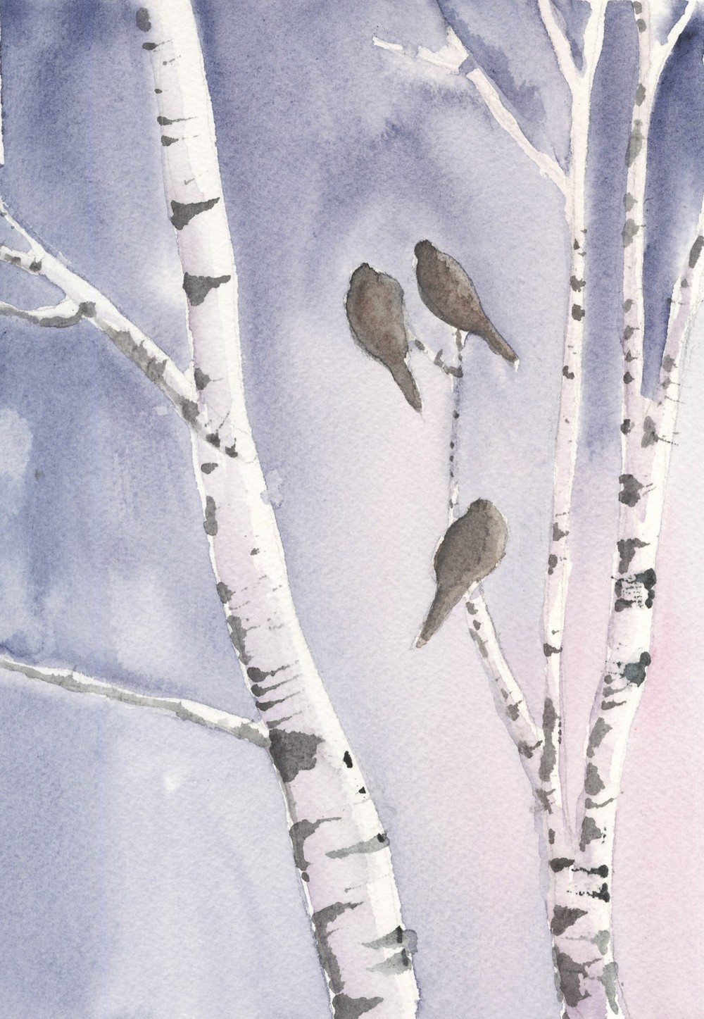 winter birds--cropped and resized--29 Jan 2016.jpg