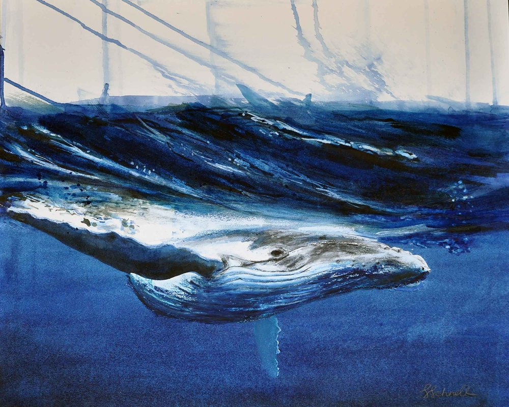 whale--for-website-20170402.jpg