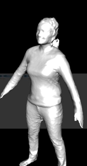 Mesh Capture of Woman.JPG