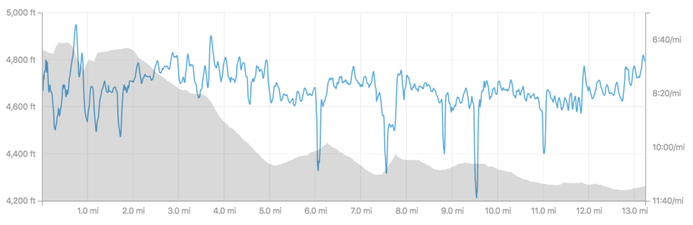 Course elevation and my pace overlay. The dips are the short walks through the water stations.