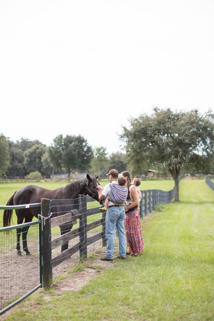 Farm ONLINE-6106