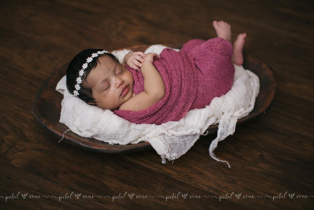 lakeland newborn photographer