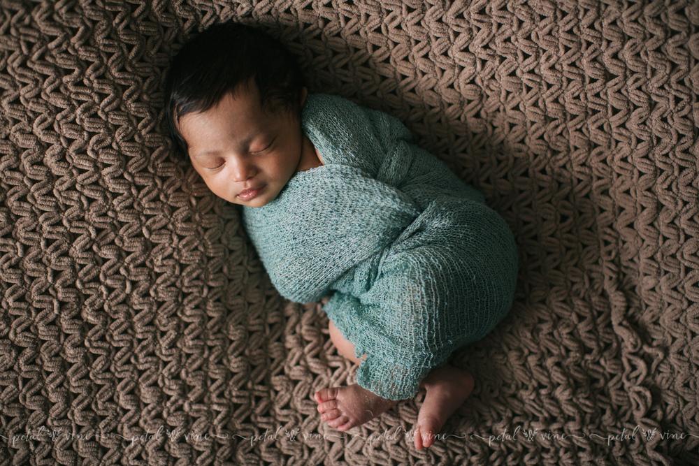 lakeland newborn photography