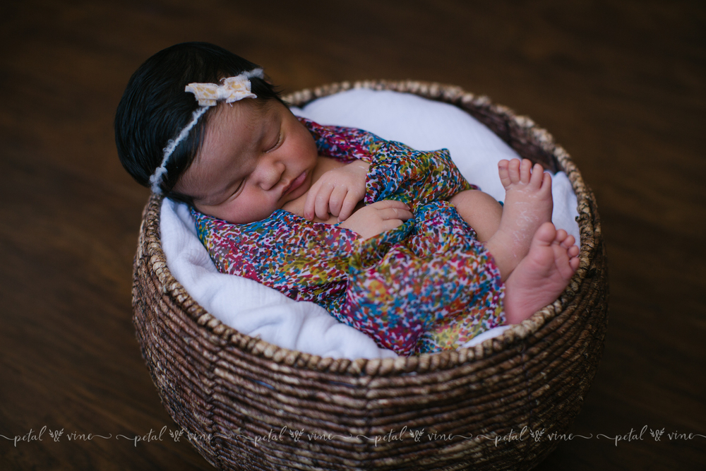 lakeland photography newborn