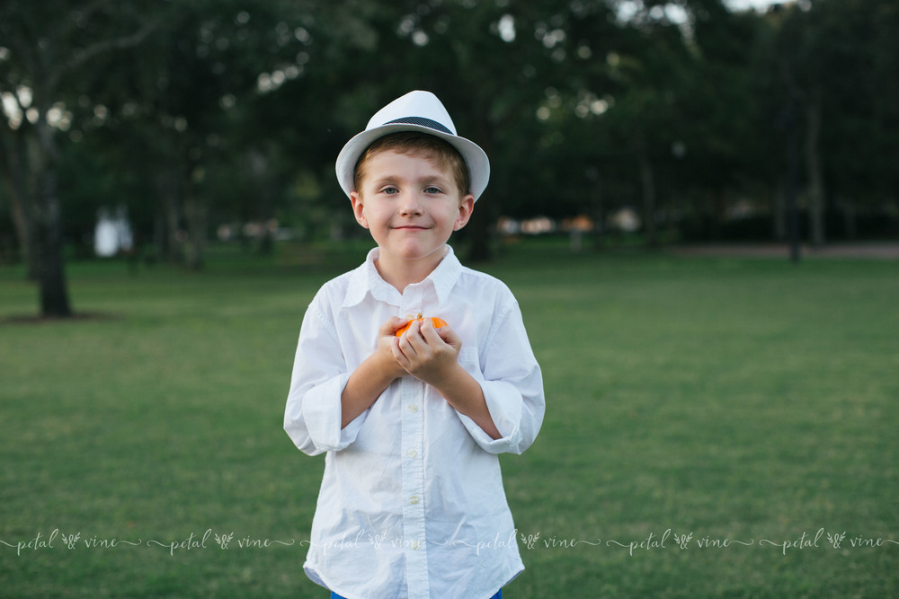clearwater lifestyle family photographer