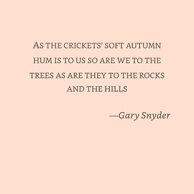 Gary Snyder just gets us!