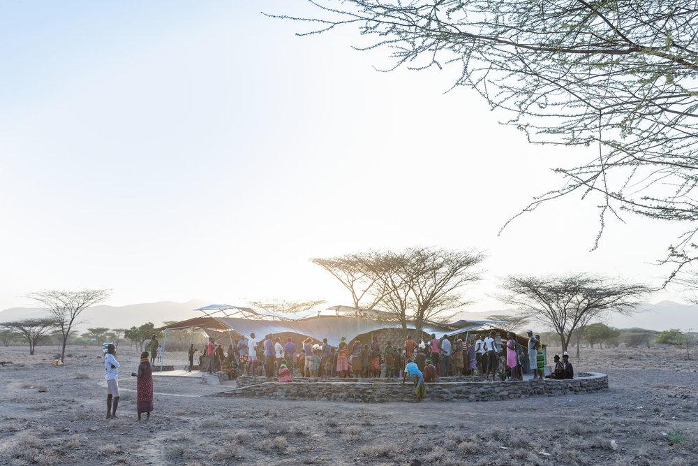 Konokono Turkana SCA 7114.jpg