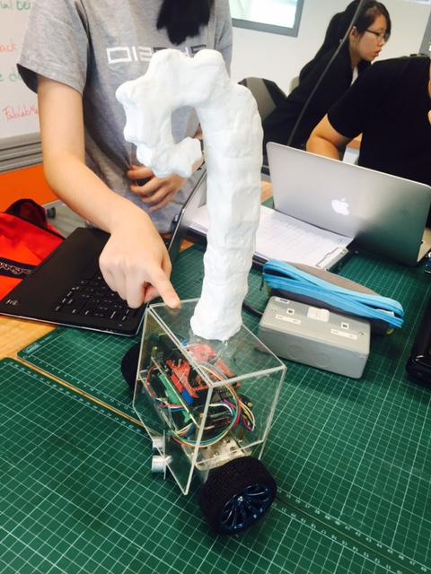 Team 5 - Self-balancing robot for elderly.jpg