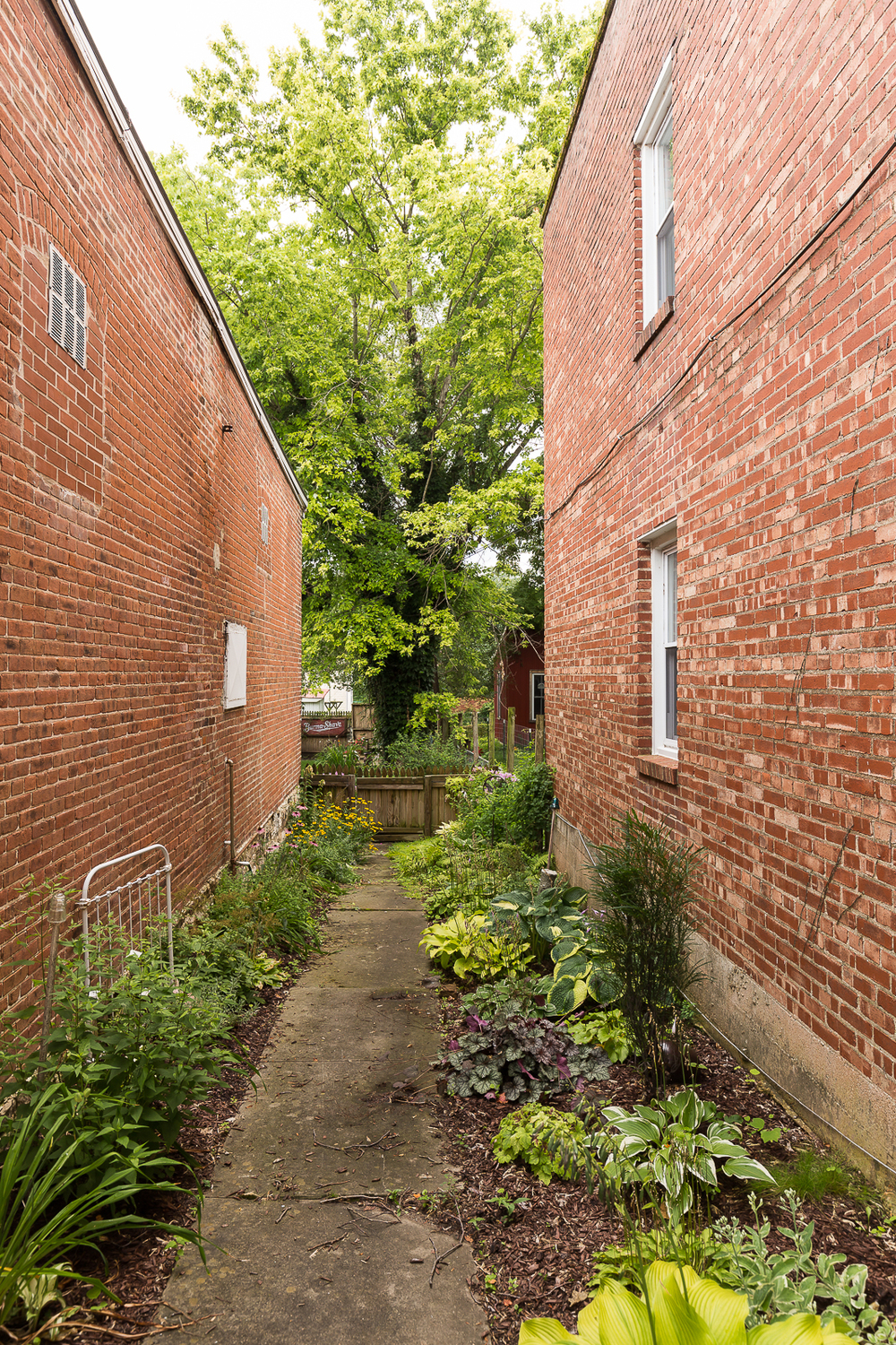 Another garden in an alley!