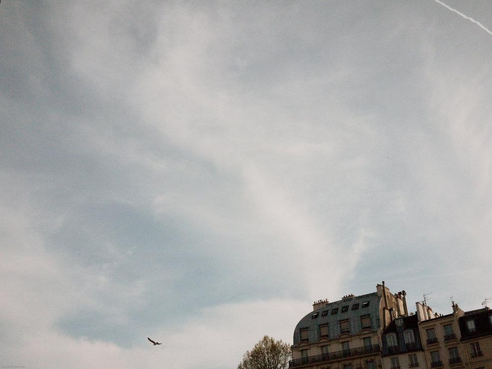 Parisian Sky_____.jpg