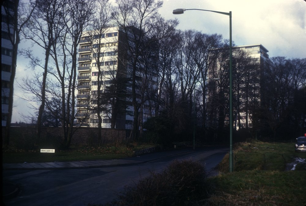 Harborne Metchley Grange Estate Flats (Trees in Metchley Lane) 3rd December 1968
