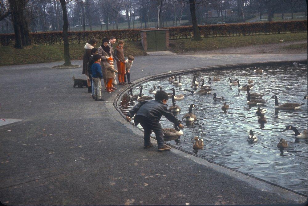 Edgbaston Cannon Hill Park. 11th February 1967
