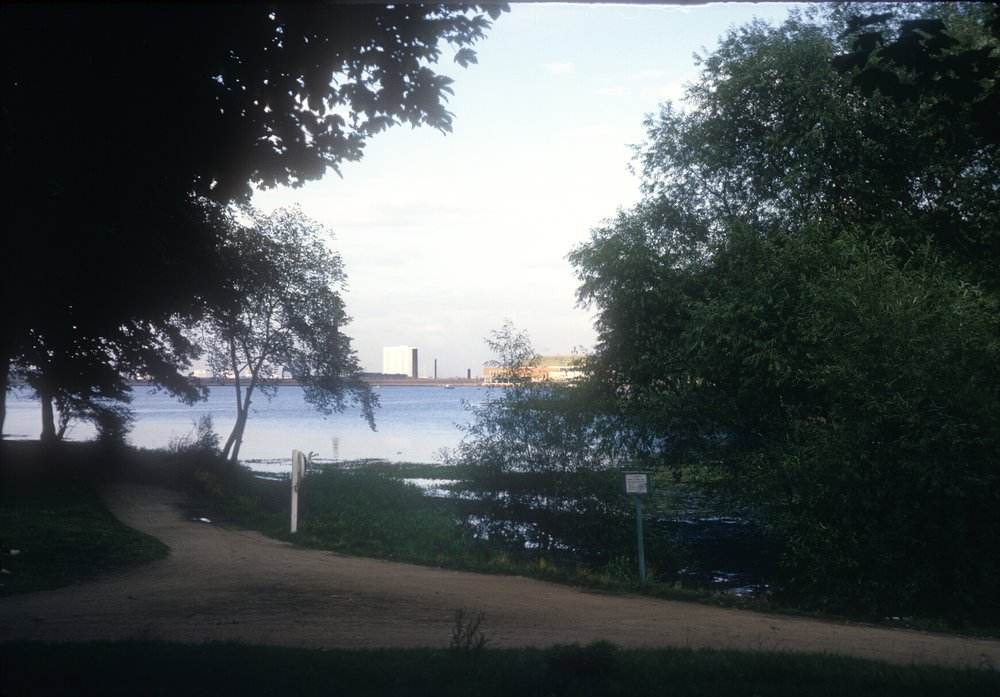 Edgbaston Reservoir (View Near Rotton Park Road Entrance) 6th September 1967