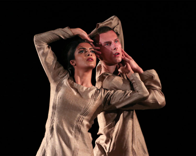 About the Elephant courtesy of Serendipity Arts Festival. Featuring Vidya Patel & Connor Scott. About The Elephant was supported in Round 1 of the Dance Hub Artistic Commissions..jpg