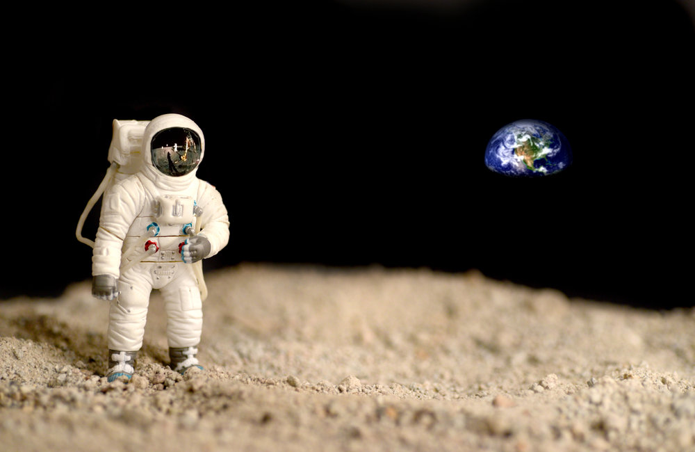 MoonFest Image.jpg