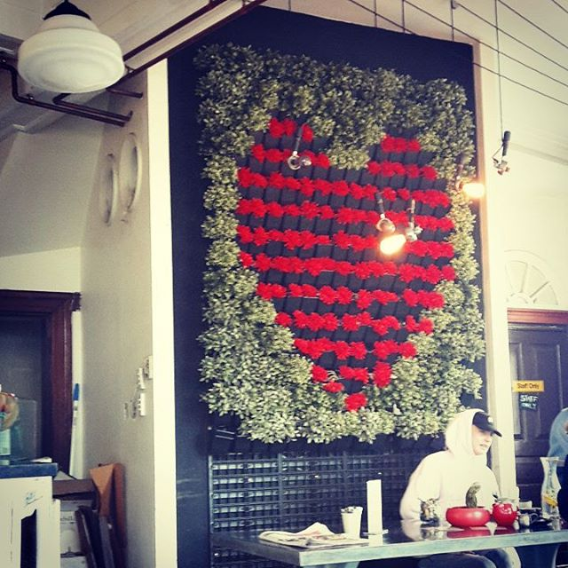 #Heart of #Newtown, a #beautiful #verticalgarden that really brightens up a #cafe ! #green #greencities #streetcoolers #sydney #city #coffee #plants