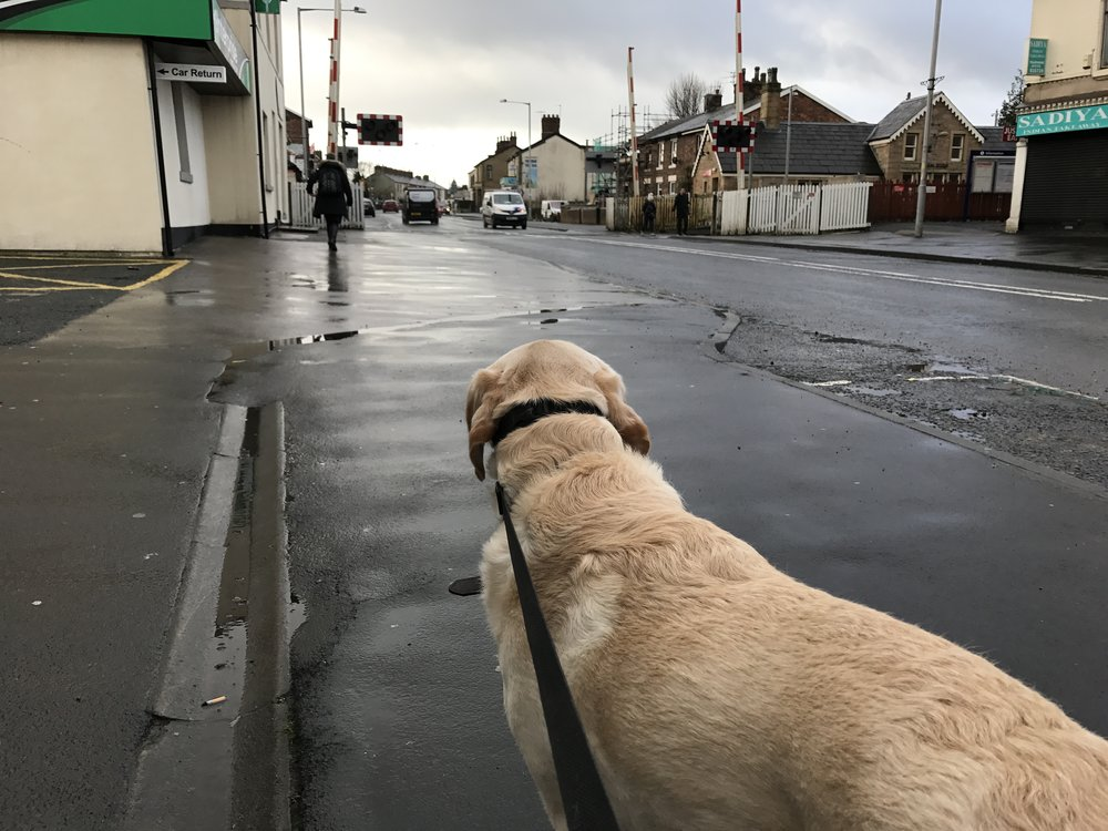 Roy took a lengthy walk through Bamber Bridge village centre.