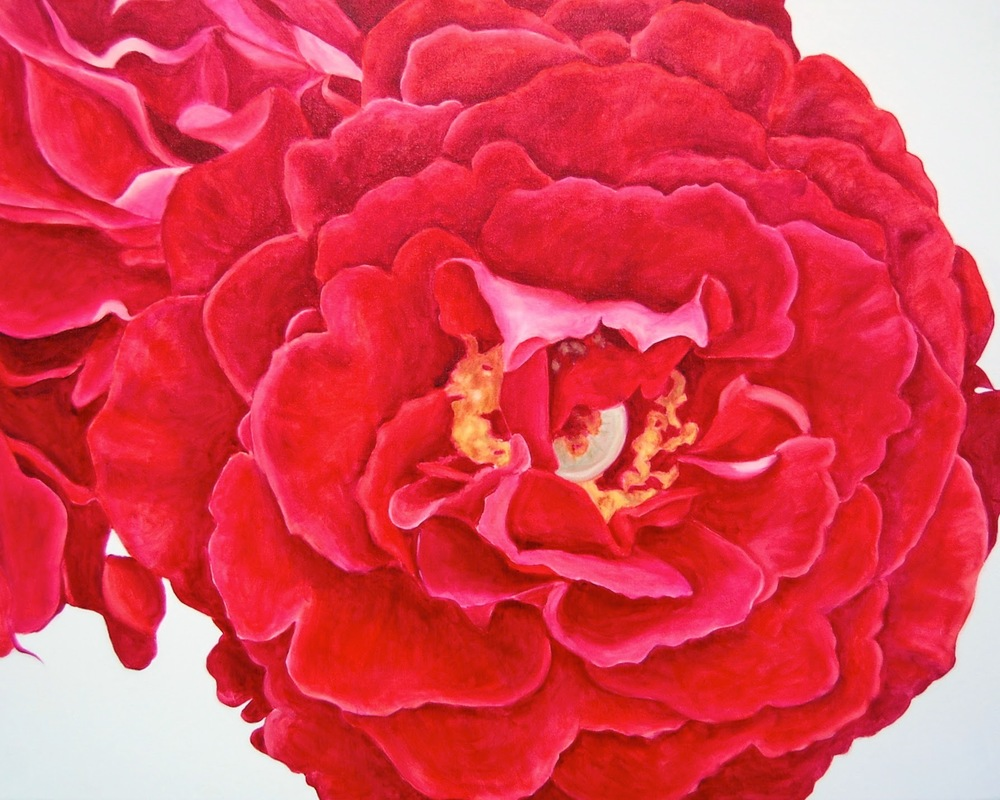 Red Rose     30 x 40 inches   oil on canvas