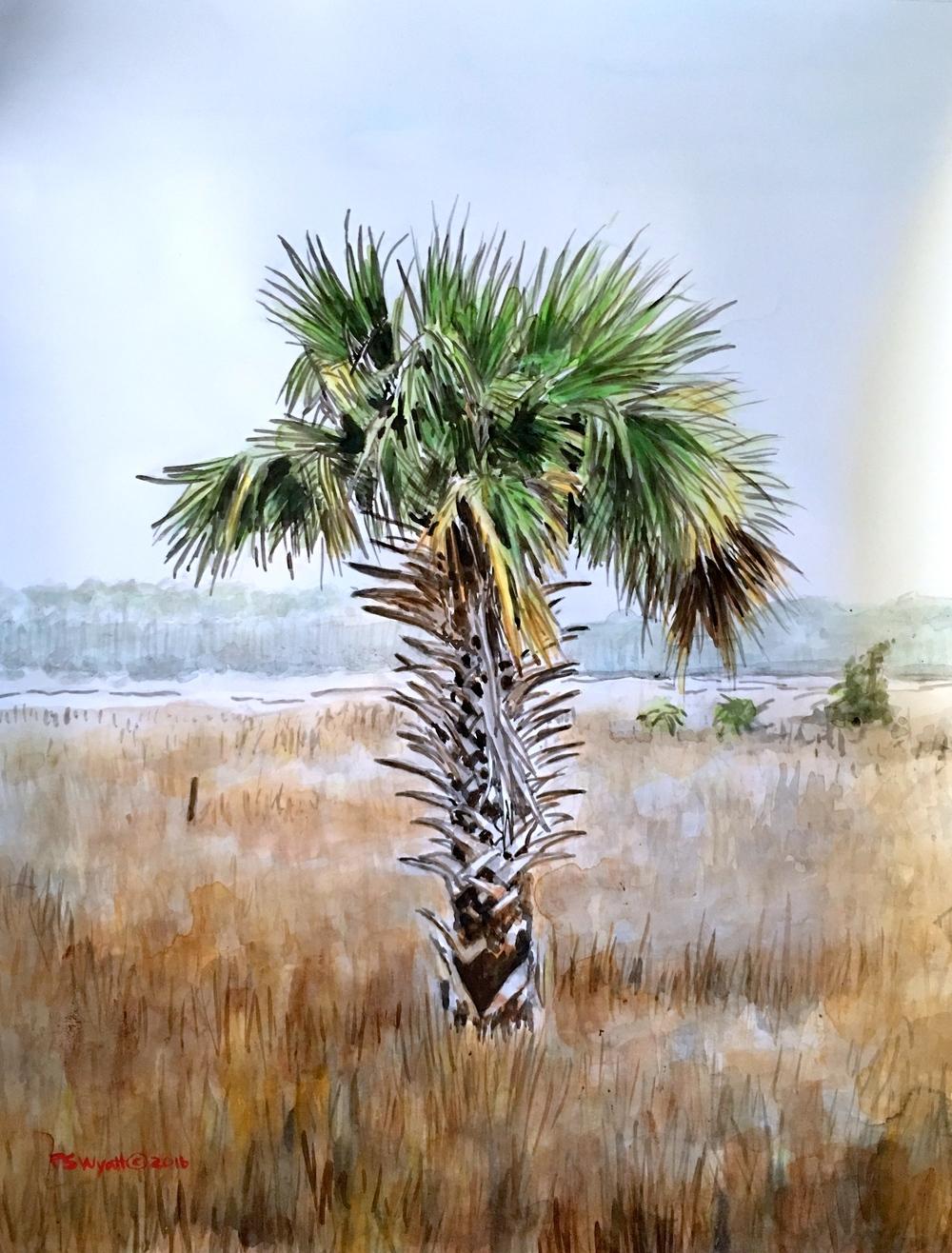 Estuary Palm