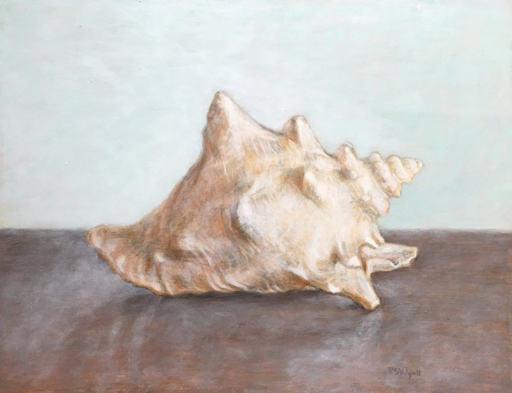 """Florida Conch""   12 x 16 inches     egg tempera and oil on wood"