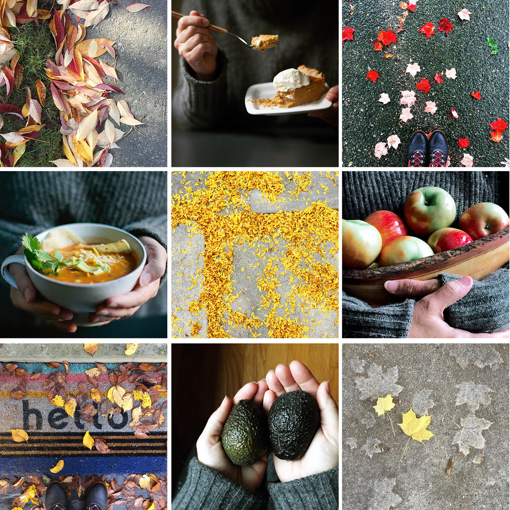 Food Stories by Dena Robles, food stylist and photographer, Santa Barbara California