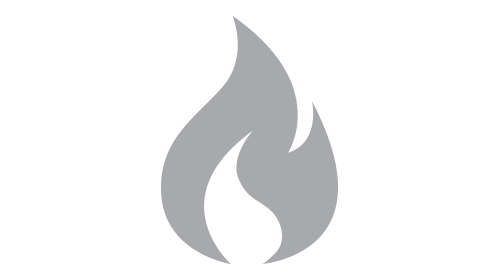 The-Care-For-Skin-Foundations-Flame-Icon.png