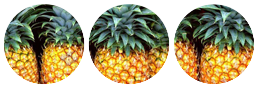 _pineapples__by_redkuu-daq1f0j.png