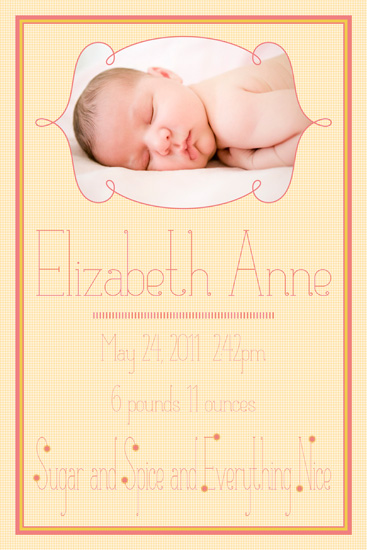 sugar and spice birth announcement.jpg