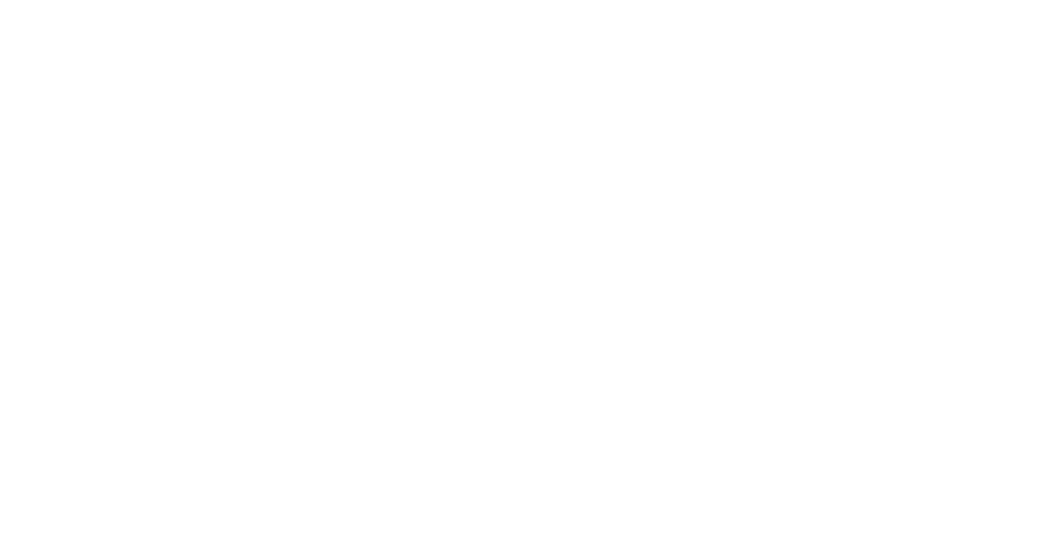 The Bridge Course