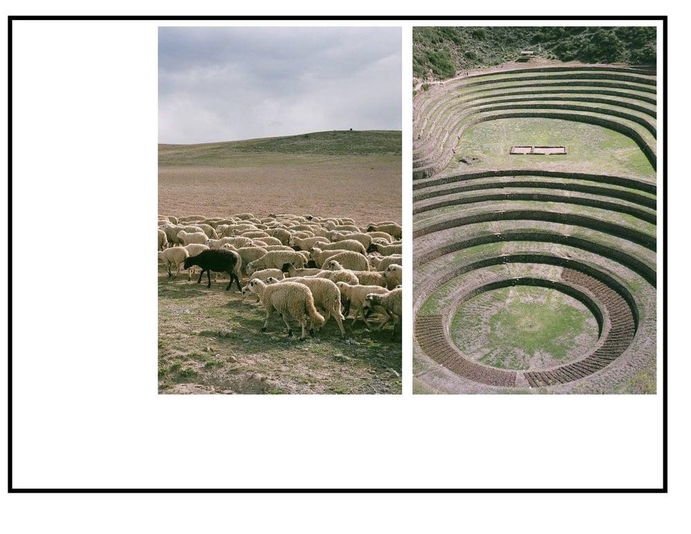 DESIGNHUTCH Peru5