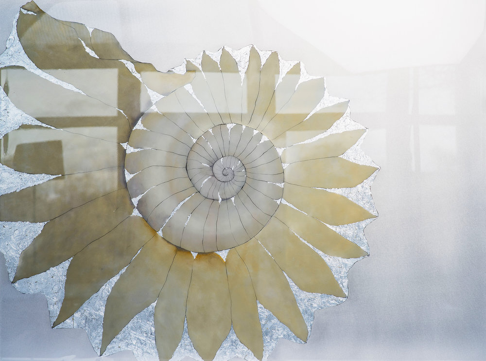 SPIRALIS AMMONITE  120x90cm | oil on aluminium with silver metal leaf and resin | £1875.00 | SOLD