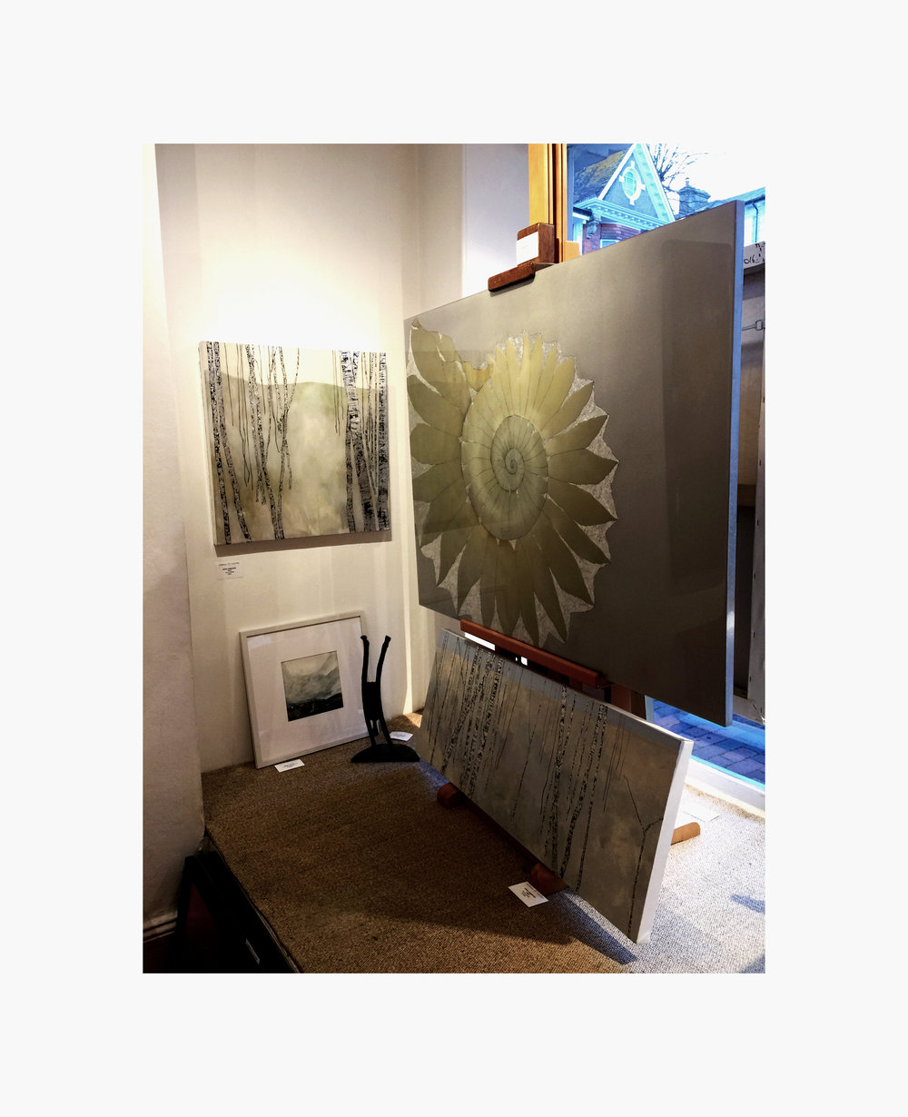 Ammonite and Birch Tree Paintings in Fairfax Gallery Tunbridge Wells