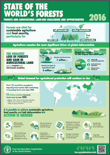 State of the World's Forests 2016 Infographic
