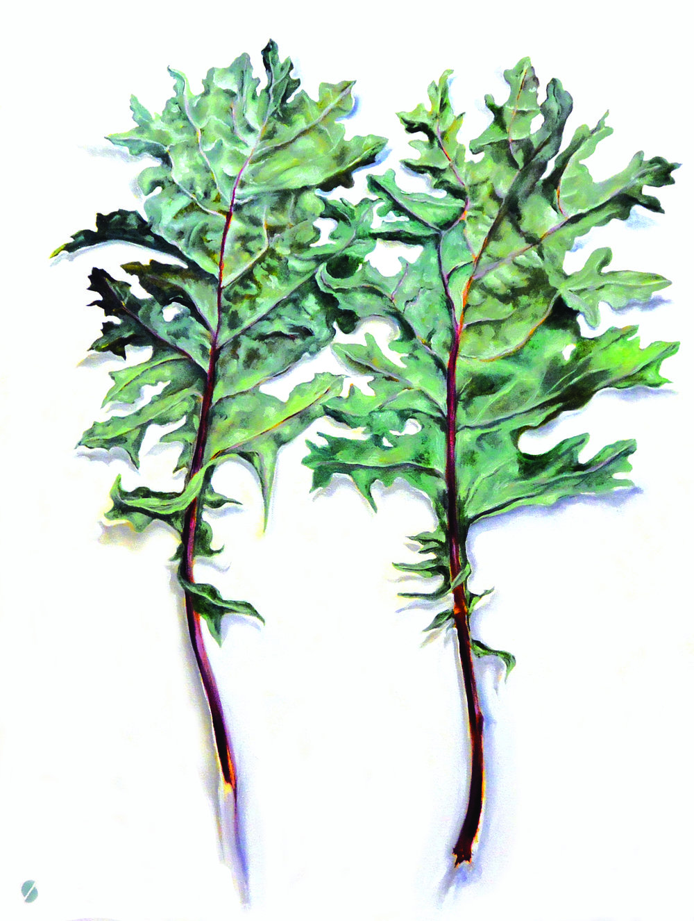 Red Russian Kale Backs , 2014-15, oil on canvas, 48 x 36 inches. Private Collection