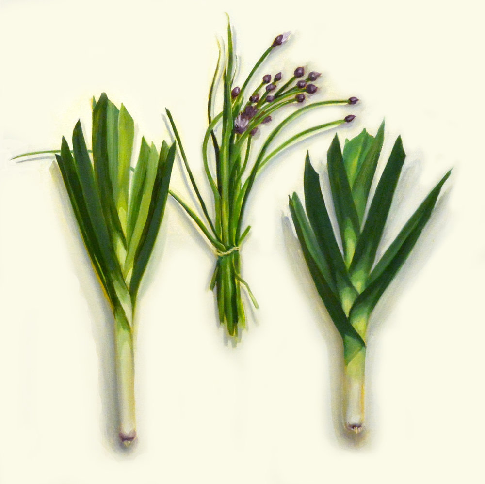 Two Leeks and Chives , 2014, oil on canvas, 30 x 30 inches, Collection: Capital One, Delaware