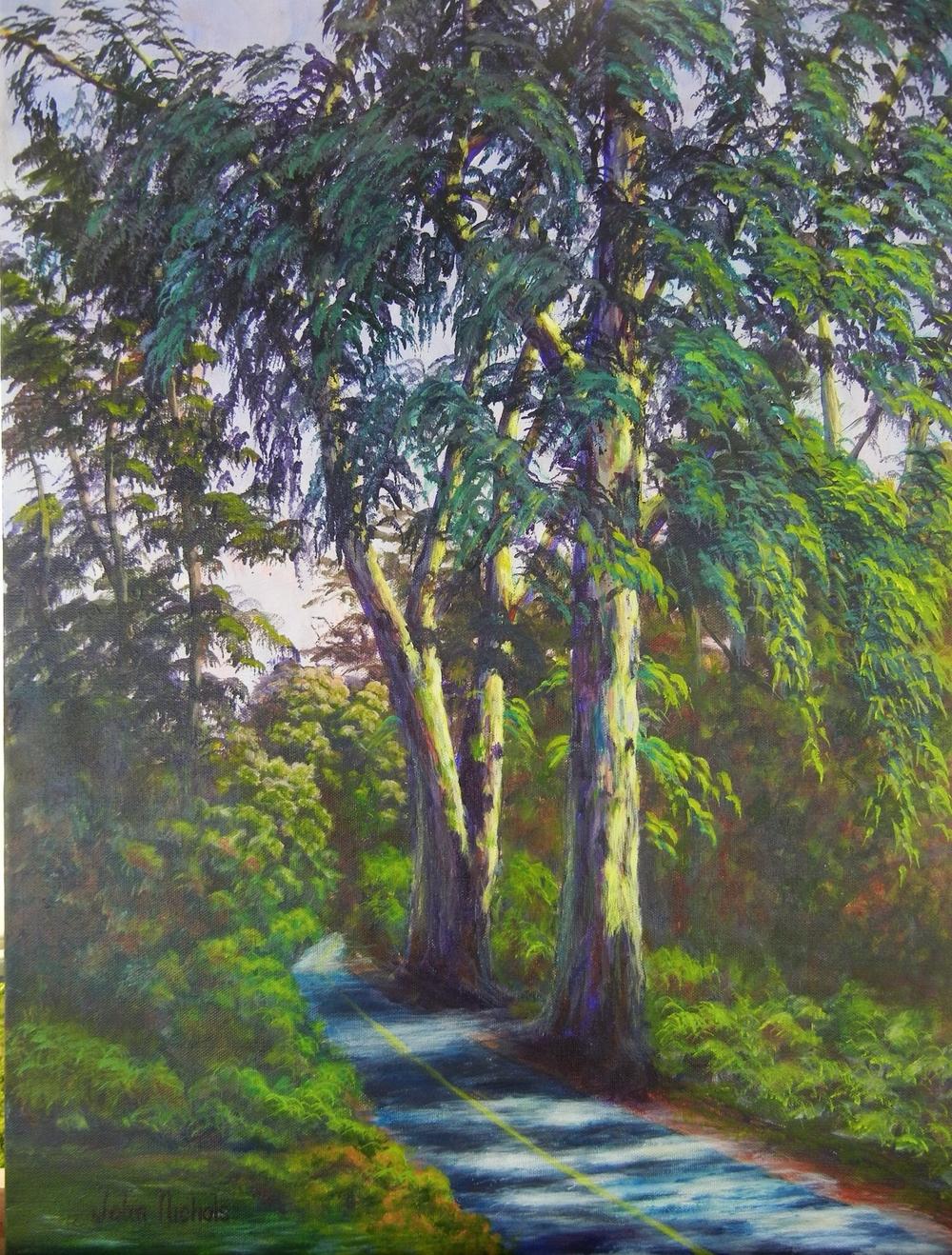 """""""Eucalptus Grove, UC Davis Arboretum"""""""