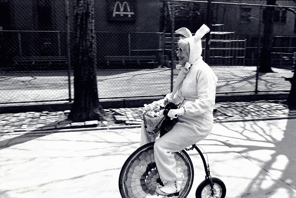 easter bunny tricycle.jpg