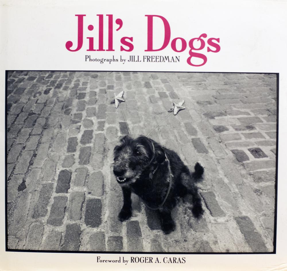 Jill's Dogs