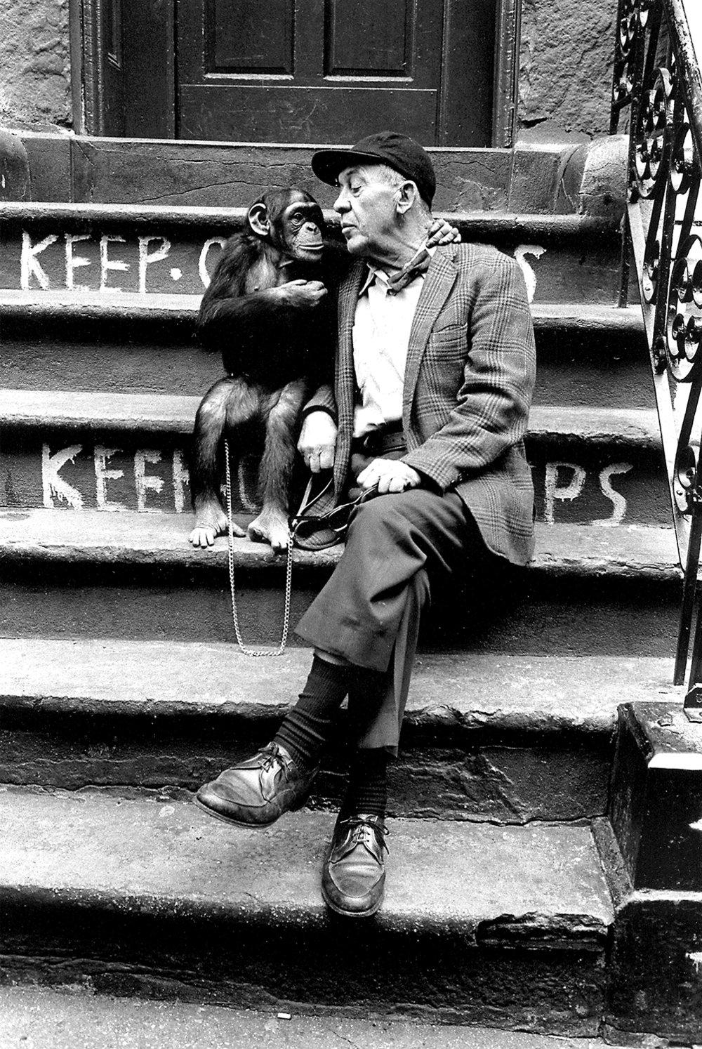 Cronies (man&chimp).jpg